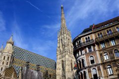 Stephansdom domkyrka på stephansplatz i Wien Österrike; Arkivbilder