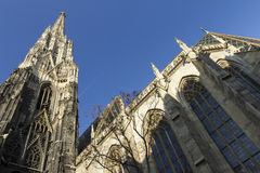 Stephansdom in Wenen Stock Fotografie