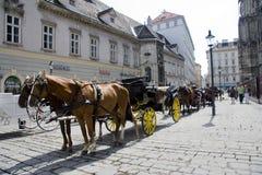 Stephansplatz Vienna carriages Royalty Free Stock Image