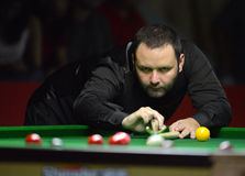 Stephen Maguire of Scotland Stock Images