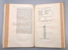 Stephens Bible illustrazione vettoriale
