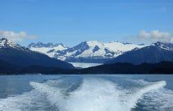 Stephens Passage Whale-het letten op royalty-vrije stock foto's