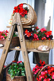 Stepladder full of flowers. Stepladder full of red flowers Stock Photos