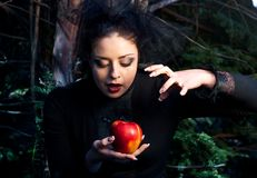 Stepmother casts a spell over the apple Stock Image