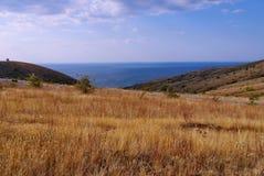 Steppa con erba asciutta e gialla nella priorità alta e strisce blu nella distanza Fotografia Stock