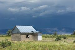 Steppa, prateria, prateria sudafricana, Fotografia Stock Libera da Diritti