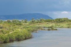 Steppa, prateria, prateria sudafricana, veld Immagini Stock Libere da Diritti