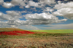Steppe. Open steppe with red loam Royalty Free Stock Photos