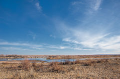 steppe Fotografia de Stock Royalty Free
