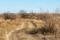 steppe Fotografia de Stock