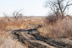 steppe Foto de Stock