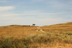 steppe Lizenzfreies Stockbild