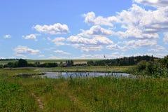 steppe Fotografering för Bildbyråer