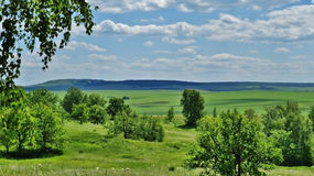 steppe Stockfoto