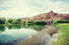 Steppe crystal clear lake with algae with groves of trees. With the hill and red rocks in the background under a beautiful sky Altai, Siberia, Russia Royalty Free Stock Photography
