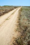 Steppe Dirt Road Royalty Free Stock Image