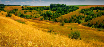Steppe and forest Royalty Free Stock Photography