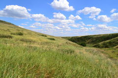 Steppe hills Stock Images