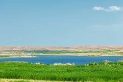 steppe Humidité déboisée et pauvre et secteur généralement plat avec le gra photos libres de droits