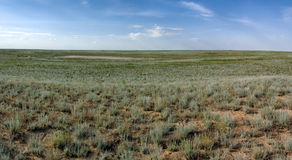Steppe In Mangistau Region Royalty Free Stock Photography