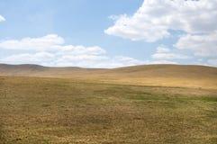 Steppe landscape Stock Images