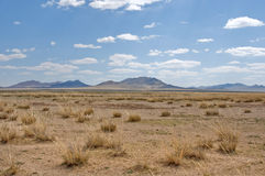Steppe landscape Stock Photography