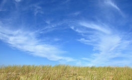 Steppe landscape with a blue sky above Stock Photo