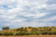 The steppe landscape. Royalty Free Stock Photography