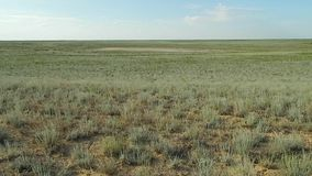 Steppe landscape. stock footage