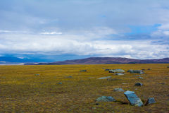Steppe landscape with large stone royalty free stock photography