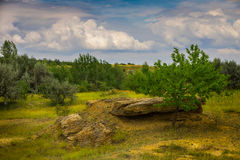 Steppe landscape before the storm. Royalty Free Stock Images