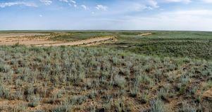 Steppe in Mangistau region Stock Photography