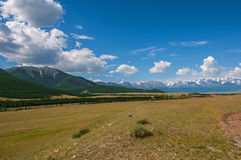 Steppe mountain snow forest valley Stock Photos
