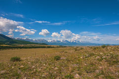 Steppe mountain snow forest valley Royalty Free Stock Image