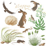 Steppe Plants and Animals Set Royalty Free Stock Photo