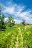Steppe, prairie, veld, veldt Stock Photos