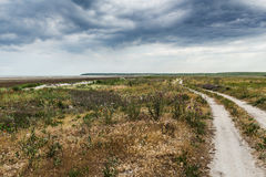 The steppe road to the sea Royalty Free Stock Image