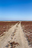 The steppe road to the sea Stock Images