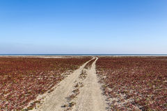 The steppe road to the sea Stock Photo
