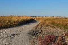 On the steppe roads Royalty Free Stock Photo