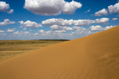 The steppe with sand Stock Photography