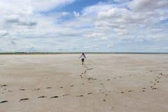 Steppe. In Siberian - desert in Omsk, lake dead Royalty Free Stock Image