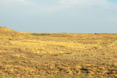 Steppe in the summer. Central Asia Kazakhstan Stock Photo