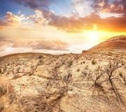 Steppe at sunset Royalty Free Stock Photos