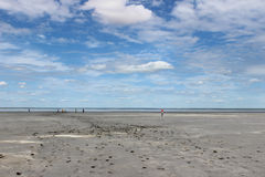 Steppe. Therapeutic mud about salt (Dead) Lake in the Omsk region - Ebeyty Royalty Free Stock Photos