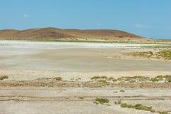 steppe Treeless fattig fuktighet och allmänt lägenhetområde med gra royaltyfri bild