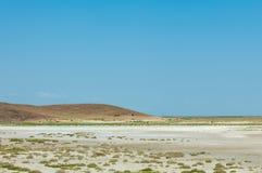 steppe Treeless fattig fuktighet och allmänt lägenhetområde med gra royaltyfria foton