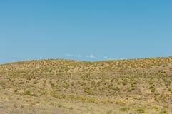 steppe Treeless fattig fuktighet och allmänt lägenhetområde med gra royaltyfri foto