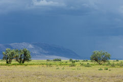 Steppe, Stock Photo