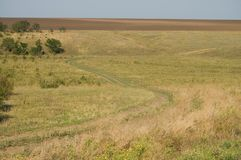 Steppe winding road Royalty Free Stock Photo